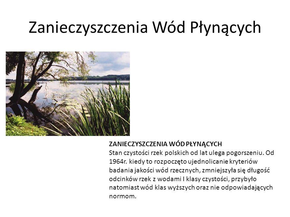 Zanieczyszczenia Wód Płynących ZANIECZYSZCZENIA WÓD PŁYNĄCYCH Stan czystości rzek polskich od lat ulega pogorszeniu. Od 1964r. kiedy to rozpoczęto uje