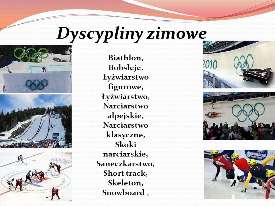 Biathlon, Bobsleje, Łyżwiarstwo figurowe, Łyżwiarstwo, Narciarstwo alpejskie, Narciarstwo klasyczne, Skoki narciarskie, Saneczkarstwo, Short track, Sk