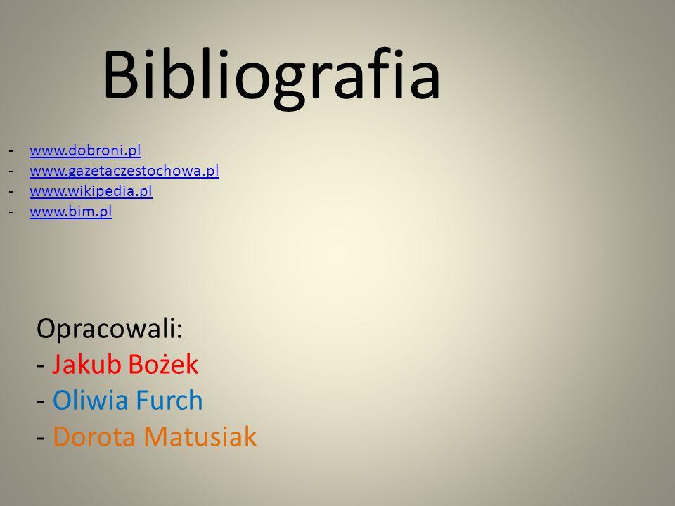 Bibliografia -www.dobroni.plwww.dobroni.pl -www.gazetaczestochowa.plwww.gazetaczestochowa.pl -www.wikipedia.plwww.wikipedia.pl -www.bim.plwww.bim.pl O