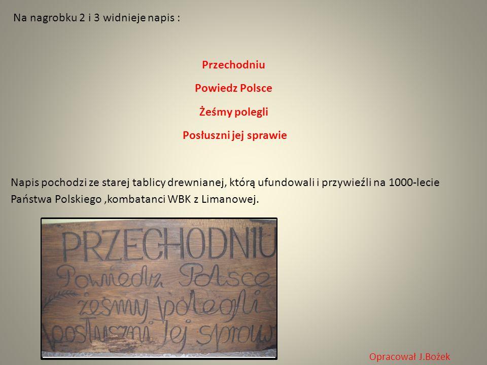 Na nagrobku 2 i 3 widnieje napis : Przechodniu Powiedz Polsce Żeśmy polegli Posłuszni jej sprawie Napis pochodzi ze starej tablicy drewnianej, którą u