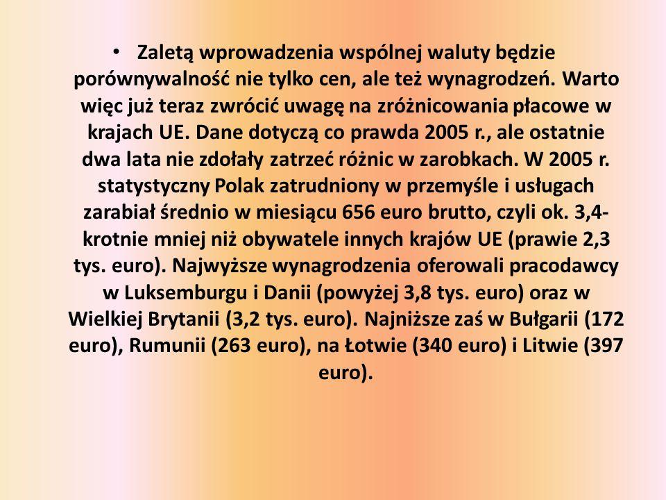 Zaletą wprowadzenia wspólnej waluty będzie porównywalność nie tylko cen, ale też wynagrodzeń.