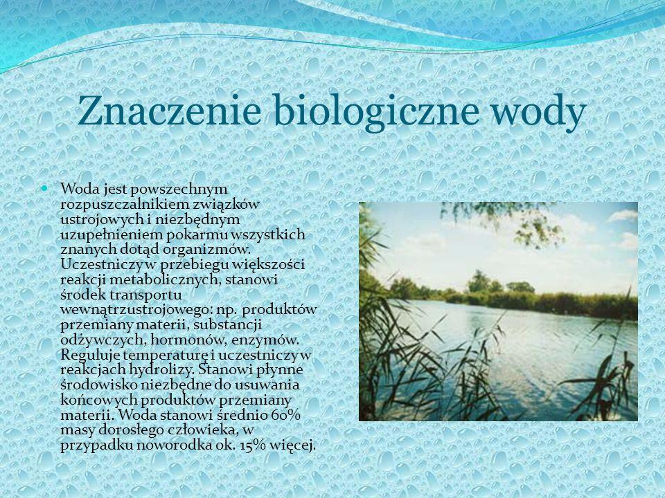 Znaczenie biologiczne wody Woda jest powszechnym rozpuszczalnikiem związków ustrojowych i niezbędnym uzupełnieniem pokarmu wszystkich znanych dotąd or
