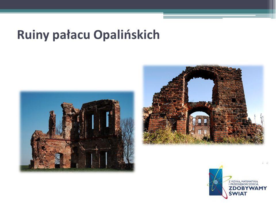 Ruiny pałacu Opalińskich