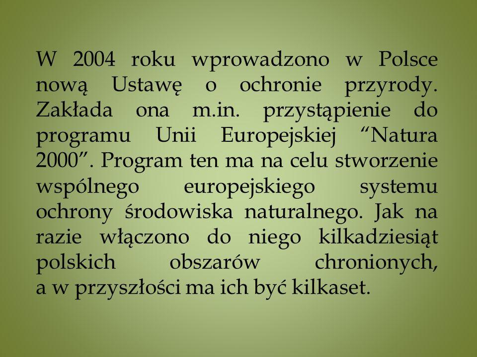 W 2004 roku wprowadzono w Polsce nową Ustawę o ochronie przyrody.
