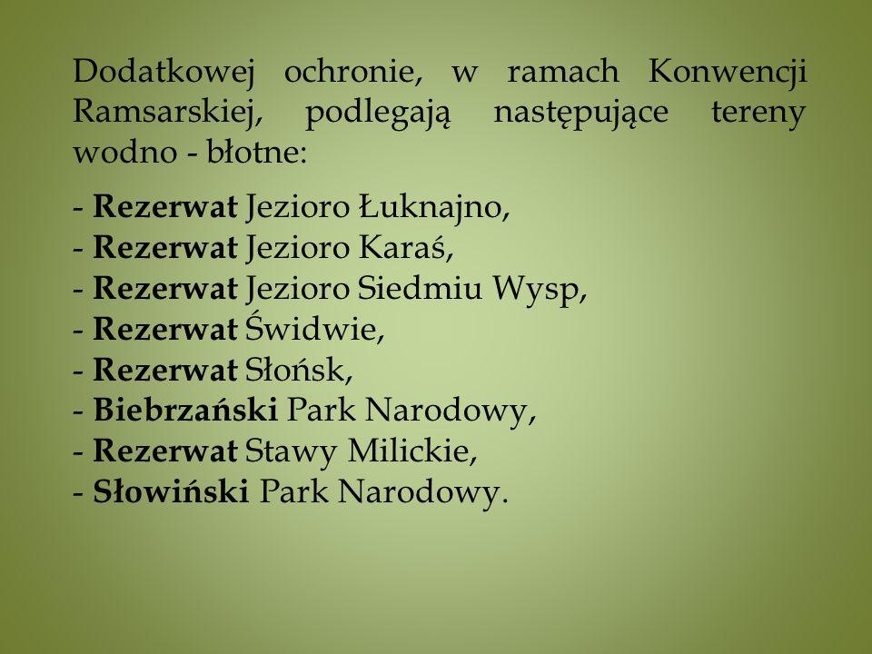 Dodatkowej ochronie, w ramach Konwencji Ramsarskiej, podlegają następujące tereny wodno - błotne: - Rezerwat Jezioro Łuknajno, - Rezerwat Jezioro Karaś, - Rezerwat Jezioro Siedmiu Wysp, - Rezerwat Świdwie, - Rezerwat Słońsk, - Biebrzański Park Narodowy, - Rezerwat Stawy Milickie, - Słowiński Park Narodowy.