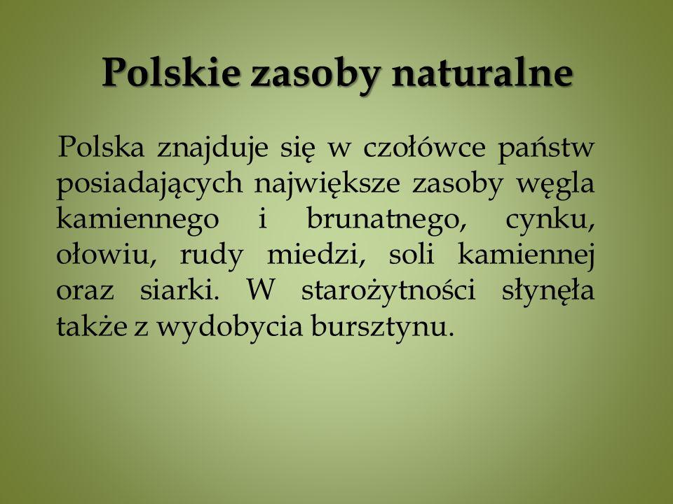 Polskie zasoby naturalne Polska znajduje się w czołówce państw posiadających największe zasoby węgla kamiennego i brunatnego, cynku, ołowiu, rudy miedzi, soli kamiennej oraz siarki.