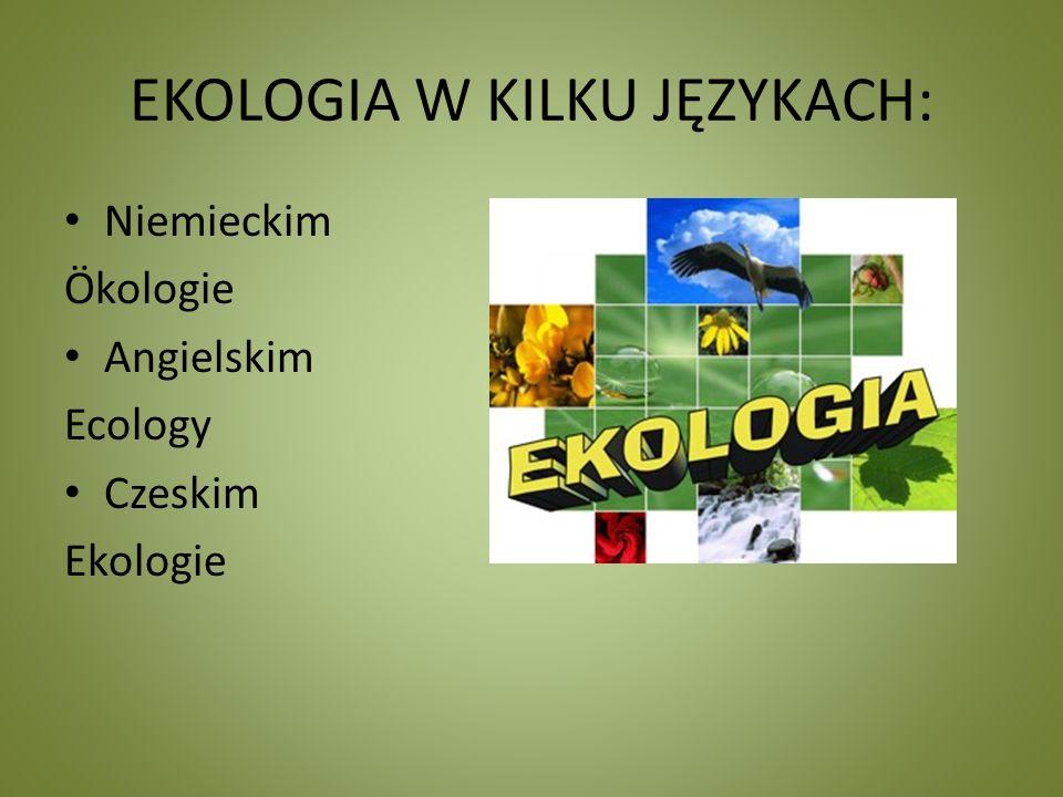 EKOLOGIA W KILKU JĘZYKACH: Niemieckim Ökologie Angielskim Ecology Czeskim Ekologie