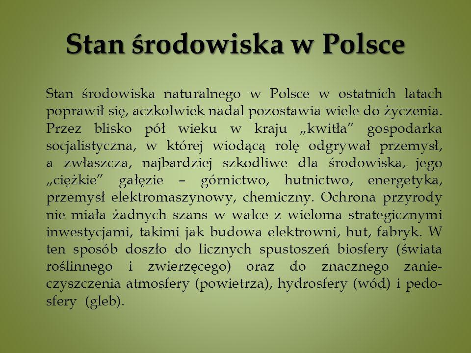 Stan środowiska naturalnego w Polsce w ostatnich latach poprawił się, aczkolwiek nadal pozostawia wiele do życzenia.