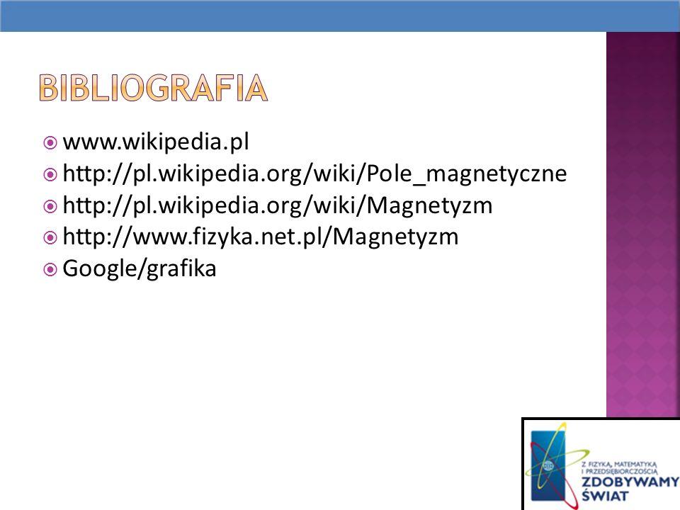www.wikipedia.pl http://pl.wikipedia.org/wiki/Pole_magnetyczne http://pl.wikipedia.org/wiki/Magnetyzm http://www.fizyka.net.pl/Magnetyzm Google/grafika