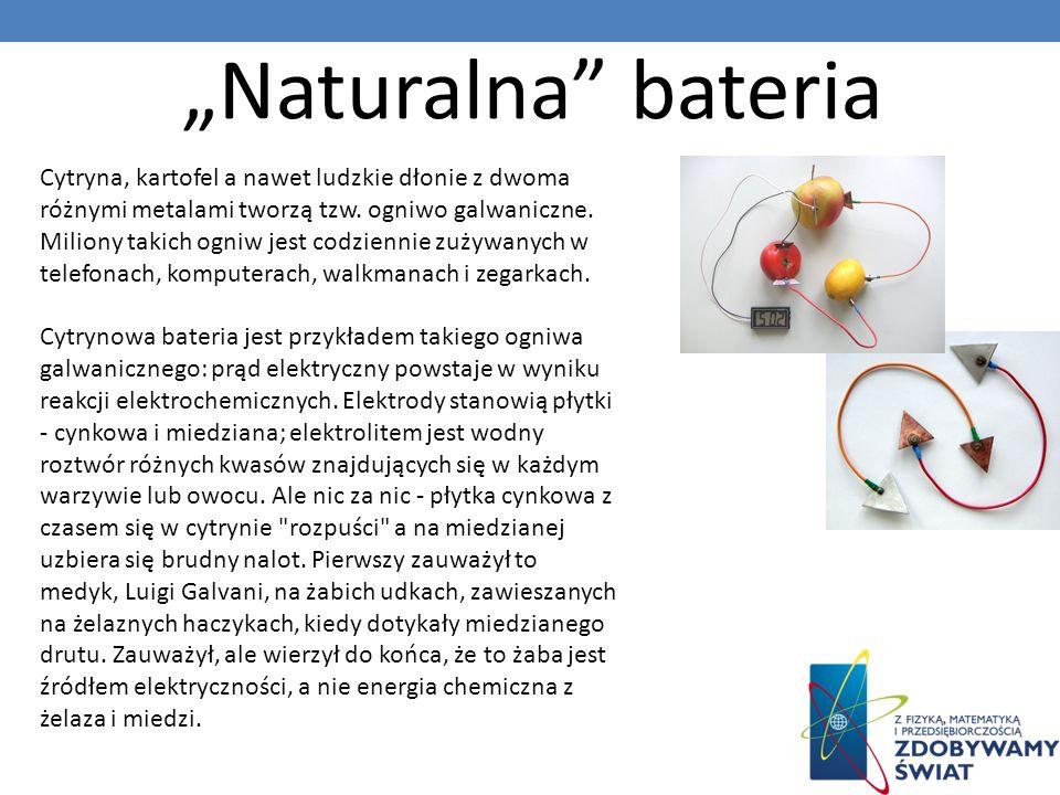 Naturalna bateria Cytryna, kartofel a nawet ludzkie dłonie z dwoma różnymi metalami tworzą tzw. ogniwo galwaniczne. Miliony takich ogniw jest codzienn