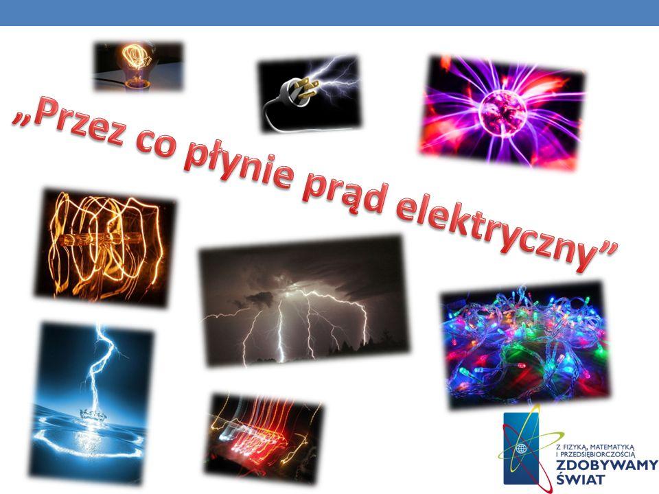 NIEZWYKŁE ŹRÓDŁO NAPIĘCIA ELEKTRYCZNEGO Niezwykłym źródłem napięcia elektrycznego jest węgorz elektryczny.