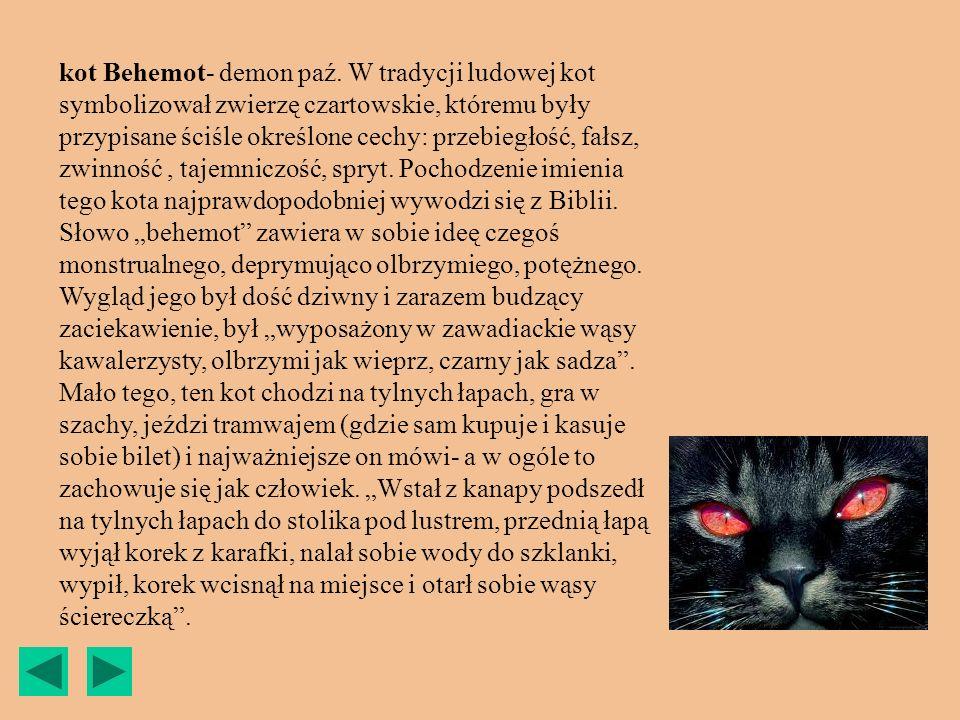 kot Behemot- demon paź. W tradycji ludowej kot symbolizował zwierzę czartowskie, któremu były przypisane ściśle określone cechy: przebiegłość, fałsz,