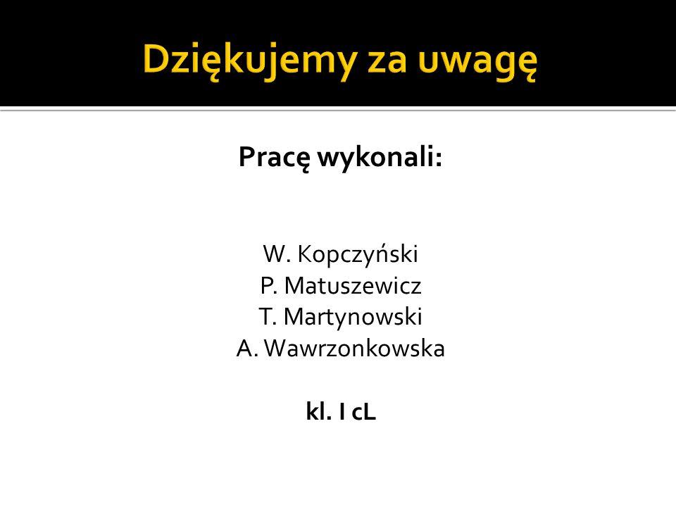Pracę wykonali: W. Kopczyński P. Matuszewicz T. Martynowski A. Wawrzonkowska kl. I cL