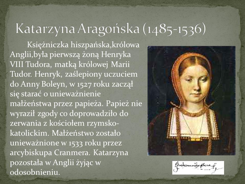 Królowa Katarzyna Aragońska świetnie wywiązywała się ze swoich obowiązków, nie mogła jednak podołać jednemu – dać królowi syna, a Anglii następcy tronu.
