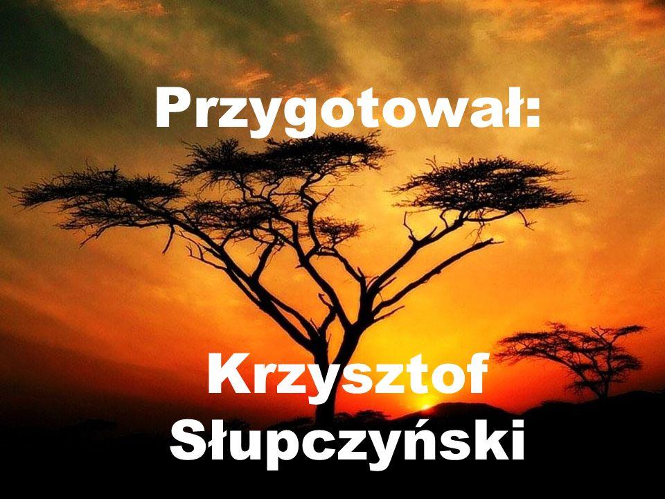 Przygotował: Krzysztof Słupczyński