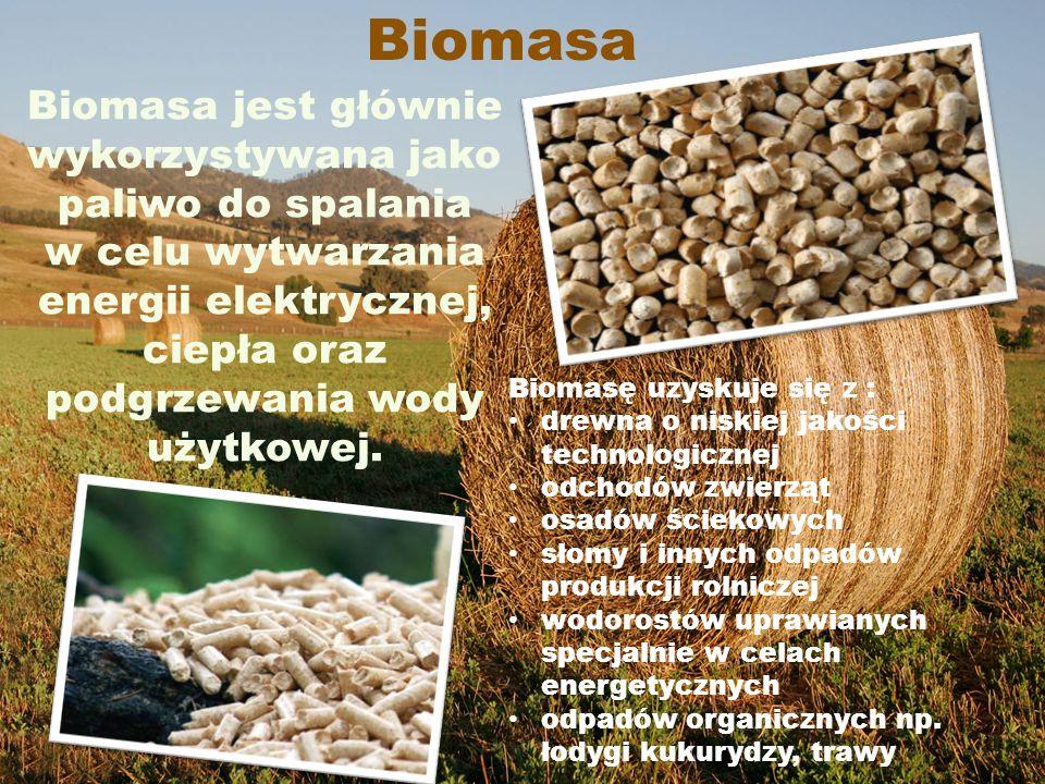 Biomasa Biomasa jest głównie wykorzystywana jako paliwo do spalania w celu wytwarzania energii elektrycznej, ciepła oraz podgrzewania wody użytkowej.