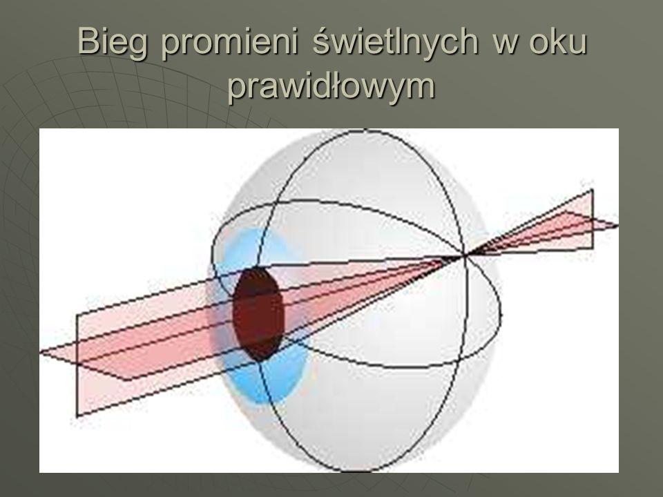 Bieg promieni świetlnych w oku prawidłowym