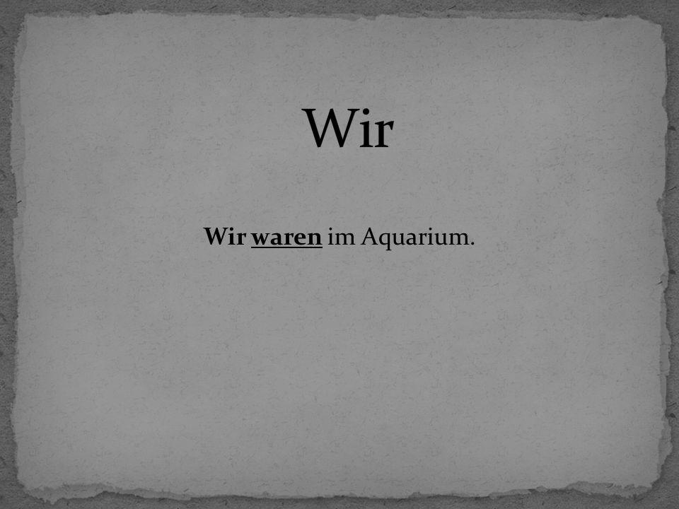 Wir waren im Aquarium.
