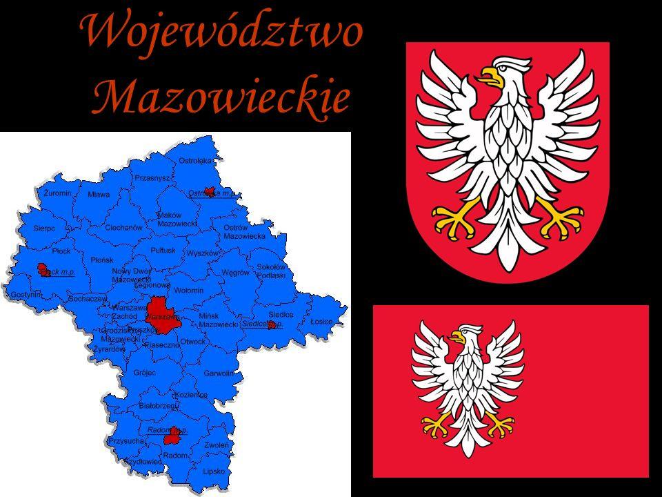 Kozienice - The symbol of the city