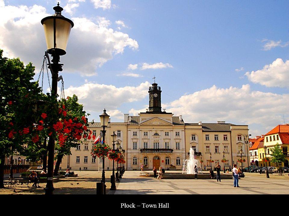 Płock - Panorama