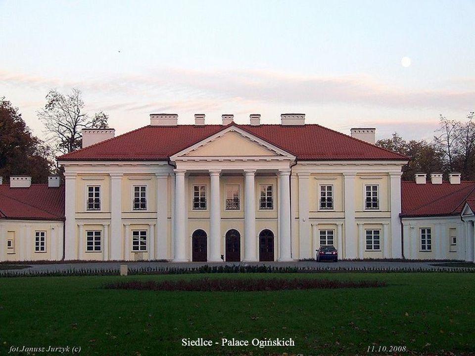 Radziejowice - Castle