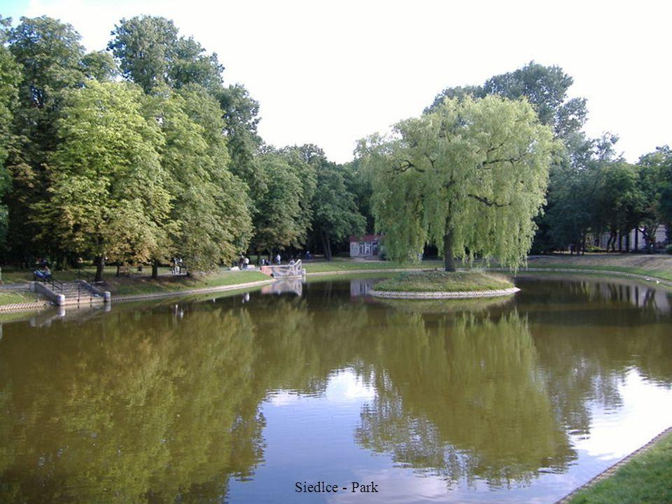 Siedlce - Palace Ogińskich