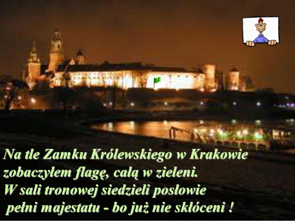 Na tle Zamku Królewskiego w Krakowie zobaczyłem flagę, całą w zieleni.