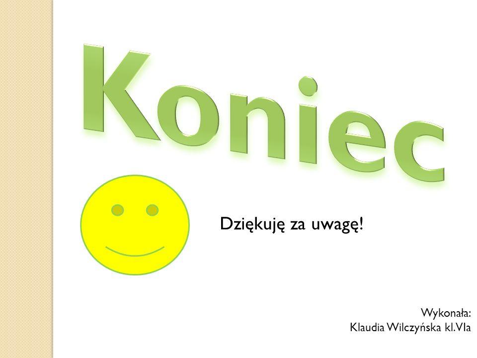 Dziękuję za uwagę! Wykonała: Klaudia Wilczyńska kl. VIa