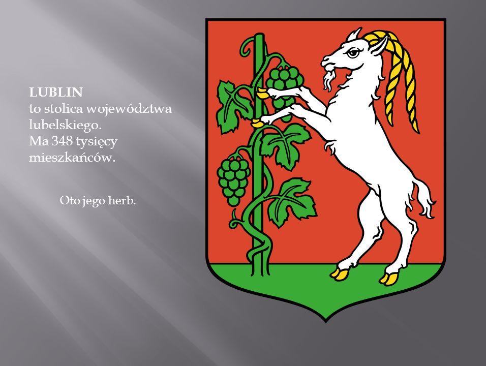 Skansen Skansen W 1960 roku utworzony został w Muzeum Okręgowym w Lublinie Oddział Budownictwa Ludowego. 1 stycznia 1970 oddział został przekształcony