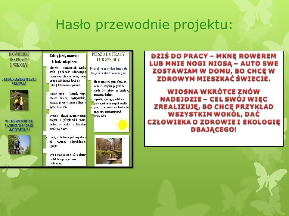 Hasło przewodnie projektu: