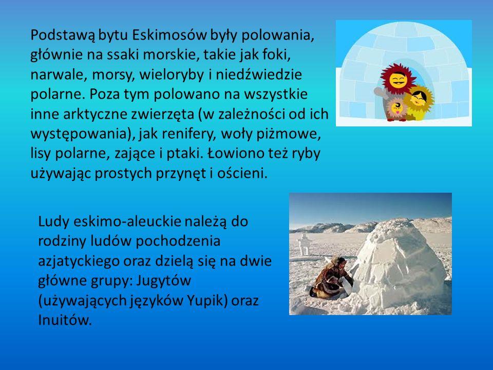 Pustynie lodowe zamieszkują ludzie prowadzący koczowniczy tryb życia, są to: Eskimosi, Inuici;