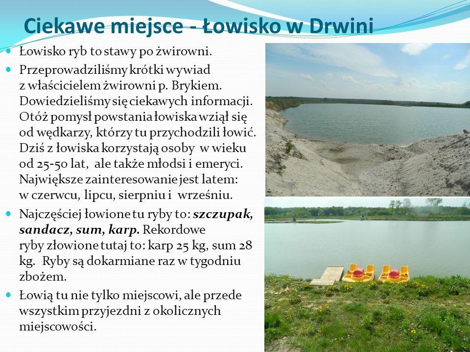 Ciekawe miejsce - Łowisko w Drwini Łowisko ryb to stawy po żwirowni.
