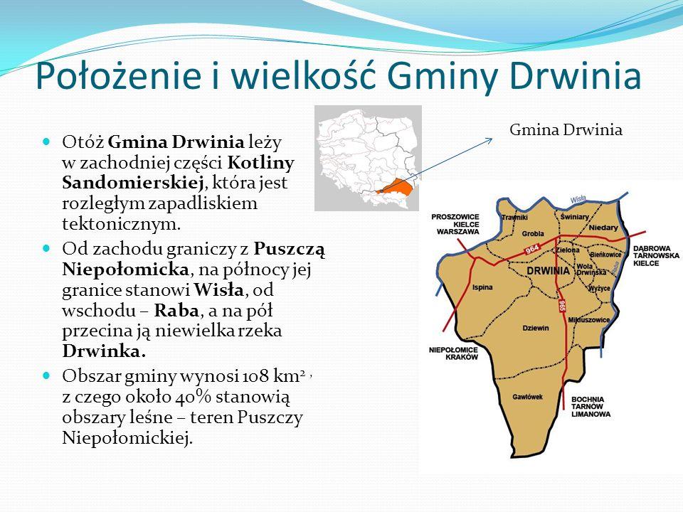 Położenie i wielkość Gminy Drwinia Otóż Gmina Drwinia leży w zachodniej części Kotliny Sandomierskiej, która jest rozległym zapadliskiem tektonicznym.