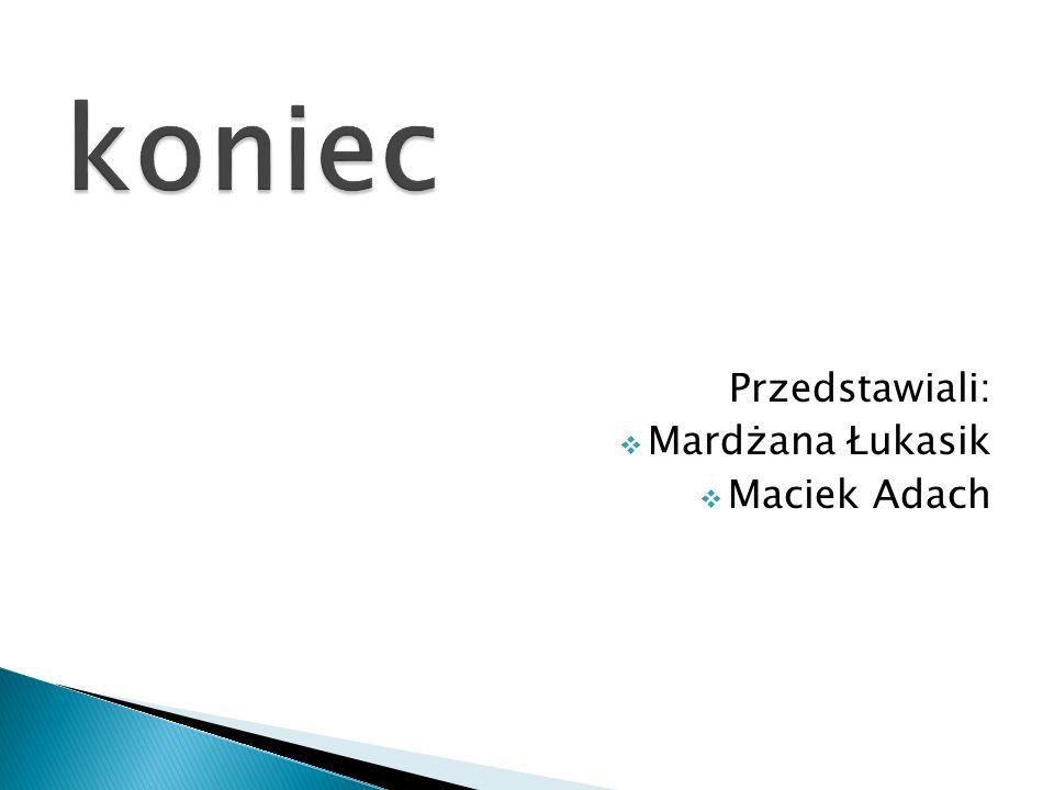 Przedstawiali: Mardżana Łukasik Maciek Adach