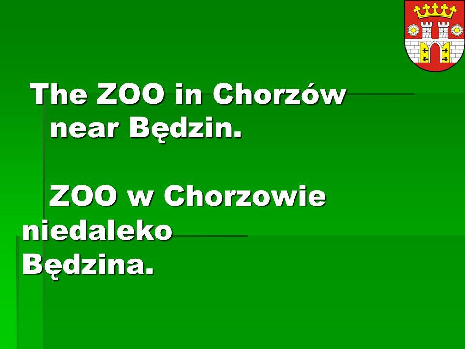 The ZOO in Chorzów near Będzin.ZOO w Chorzowie niedaleko Będzina.