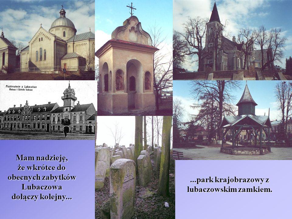 Mam nadzieję, że wkrótce do obecnych zabytków Lubaczowa dołączy kolejny......park krajobrazowy z lubaczowskim zamkiem.