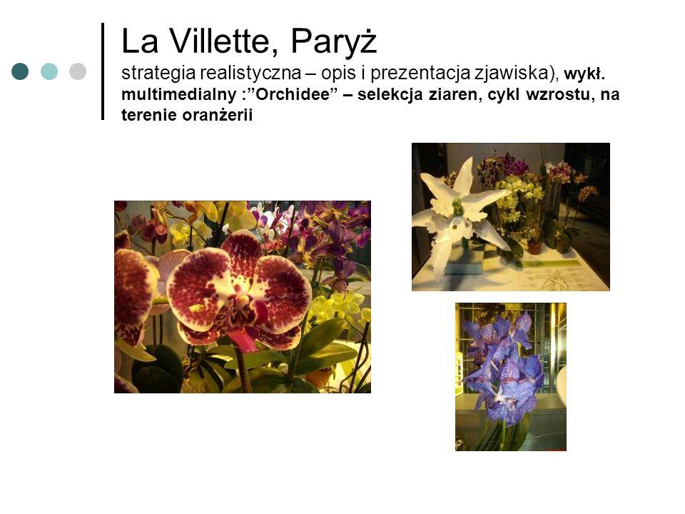 La Villette, Paryż strategia realistyczna – opis i prezentacja zjawiska), wykł. multimedialny :Orchidee – selekcja ziaren, cykl wzrostu, na terenie or