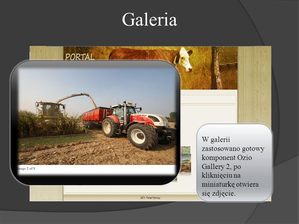 Galeria W galerii zastosowano gotowy komponent Ozio Gallery 2, po kliknięciu na miniaturkę otwiera się zdjęcie.