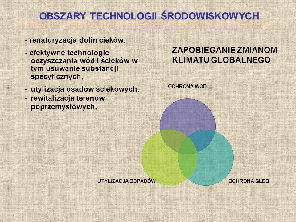 KWESTIE ORGANIZACYJNE Planowana liczba spotkań (Sesje warsztatowe) 1.Spotkanie organizacyjne – listopad/grudzień 2.Etap STEEP (Sprawozdanie 1) 3.Etap SWOT – Macierz czynników (Sprawozdanie 2) 4.Tezy kluczowe (Sprawozdanie 3) 5.Scenariusze rozwoju technologii (Sprawozdanie 4) Komunikacja: Poczta elektroniczna, obieg dokumentów - Uzgadnianie terminów sesji, - Plan spotkań - Kwestie formalne (umowy etapowe, rozliczenie czasu pracy)