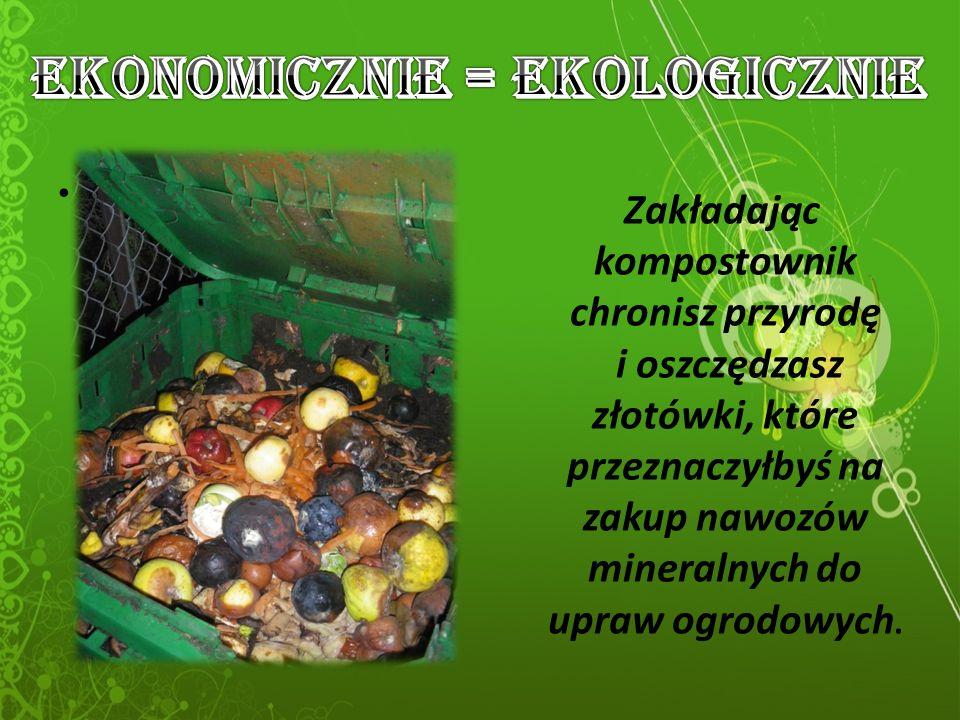 Zakładając kompostownik chronisz przyrodę i oszczędzasz złotówki, które przeznaczyłbyś na zakup nawozów mineralnych do upraw ogrodowych.