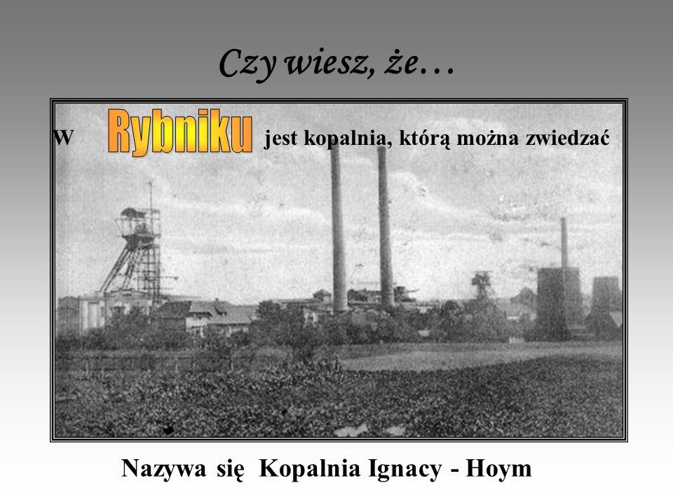 Czy wiesz, że… W jest kopalnia, którą można zwiedzać Nazywa się Kopalnia Ignacy - Hoym