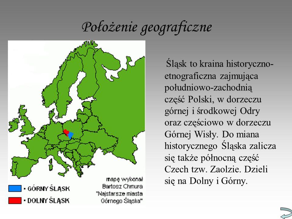 Czerwionka – Leszczyny: sołectwo Szczejkowice Wieś w południowej części gminy, otoczona lasami, 2 km na płd.
