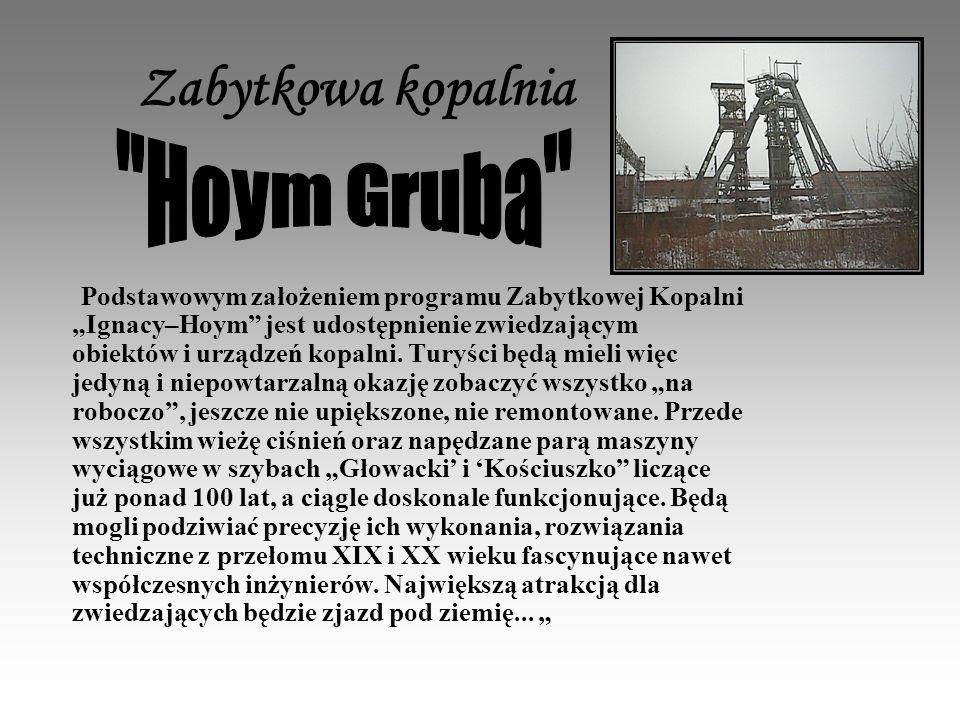 Zabytkowa kopalnia Podstawowym założeniem programu Zabytkowej Kopalni Ignacy–Hoym jest udostępnienie zwiedzającym obiektów i urządzeń kopalni.