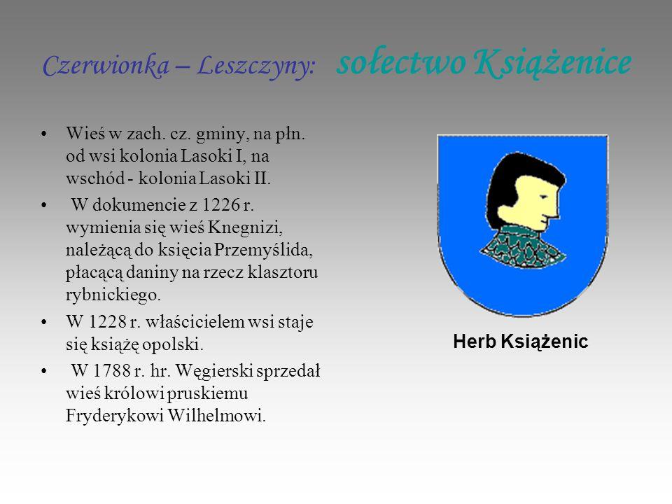 Czerwionka – Leszczyny: sołectwo Książenice Wieś w zach.