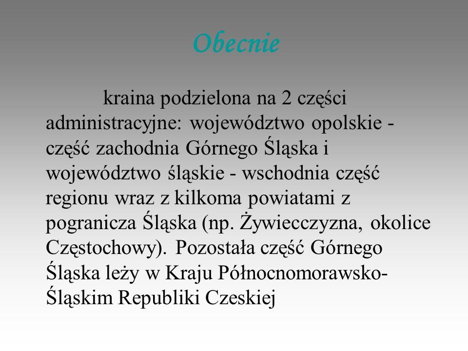 Obecnie kraina podzielona na 2 części administracyjne: województwo opolskie - część zachodnia Górnego Śląska i województwo śląskie - wschodnia część regionu wraz z kilkoma powiatami z pogranicza Śląska (np.