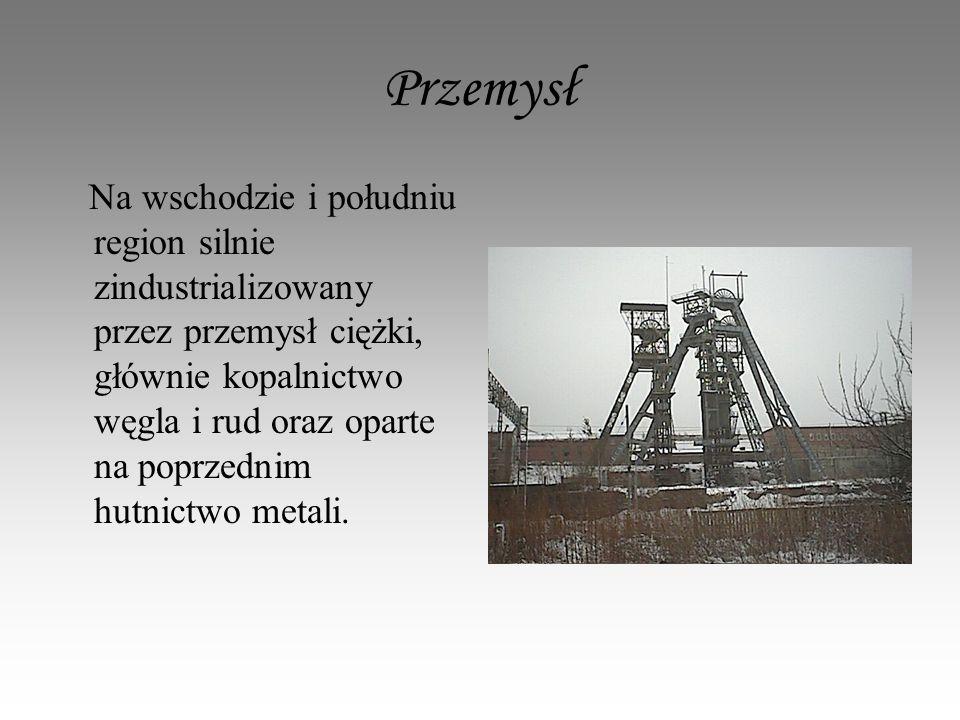 Przemysł Na wschodzie i południu region silnie zindustrializowany przez przemysł ciężki, głównie kopalnictwo węgla i rud oraz oparte na poprzednim hutnictwo metali.
