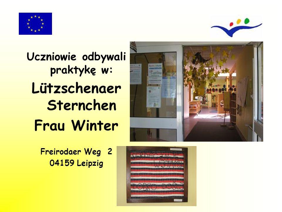 Beneficjenci prowadzili dzienniki praktyk w języku polskim i języku niemieckim.
