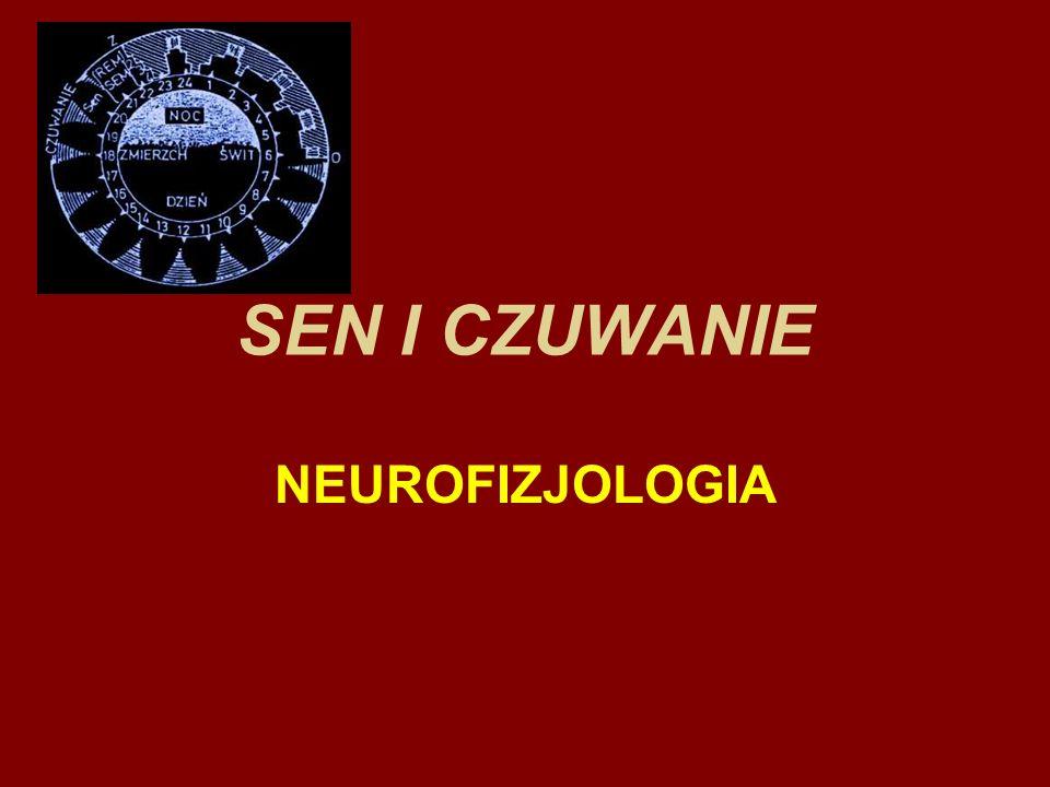 Sen i Czuwanie U ludzi dorosłych występują cyklicznie w ciągu doby dwa podstawowe stany fizjologiczne : SEN i CZUWANIE
