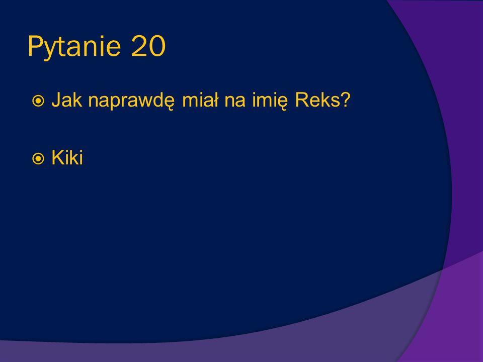 Pytanie 19 Jak Mikołaj nazwał pieska, którego spotkał wracając pewnego dnia ze szkoły? Reks