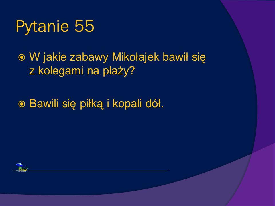 Pytanie 54 Gdzie ostatecznie wyjechał Mikołajek z rodzicami? Morskie Skałki w Bretanii nad Atlantykiem